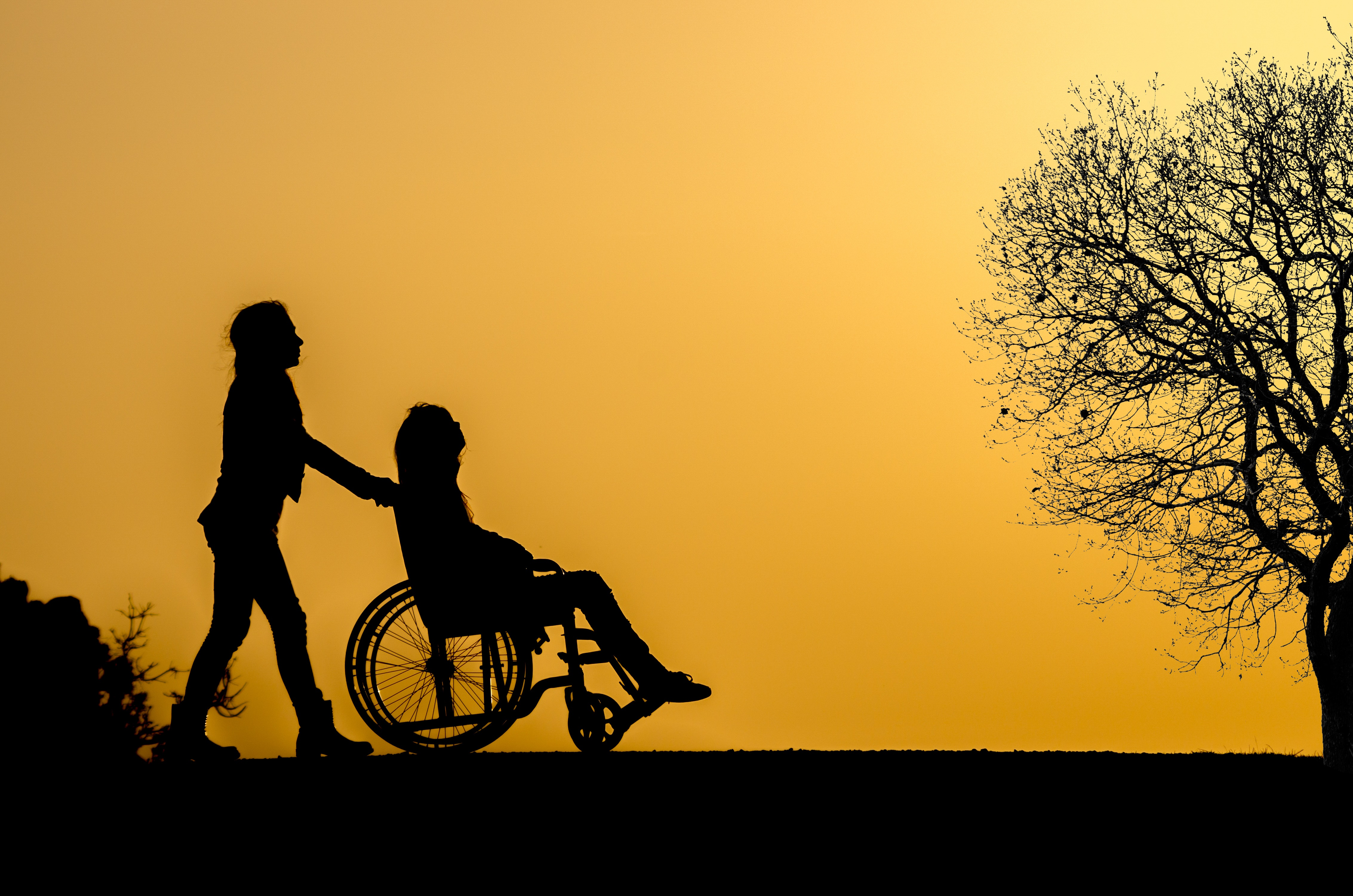 Financial Support for an Adult Disabled Child